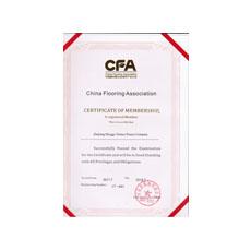 CFA证shu2